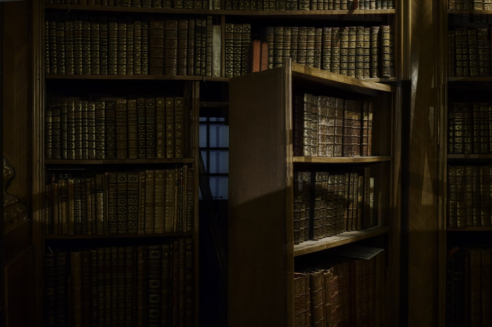 opened secret door inside library
