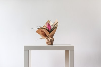 flower arrangement on table string zoom background