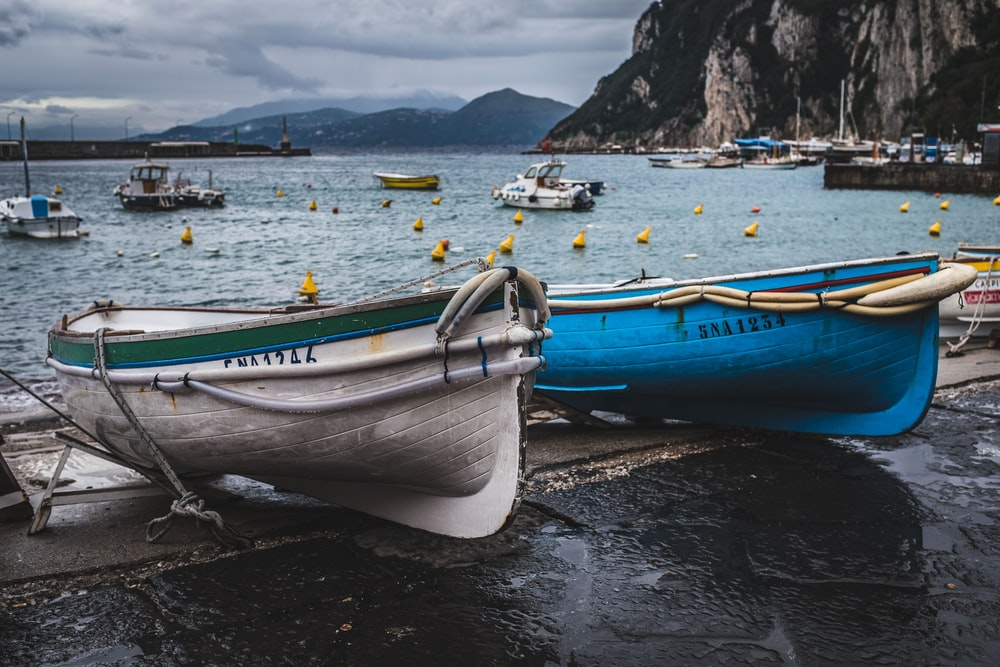 two blue and white canoe boats on seashore
