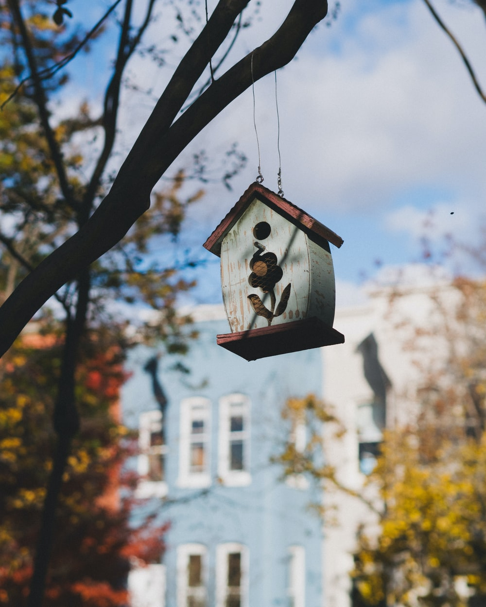 gray and brown wooden bird house