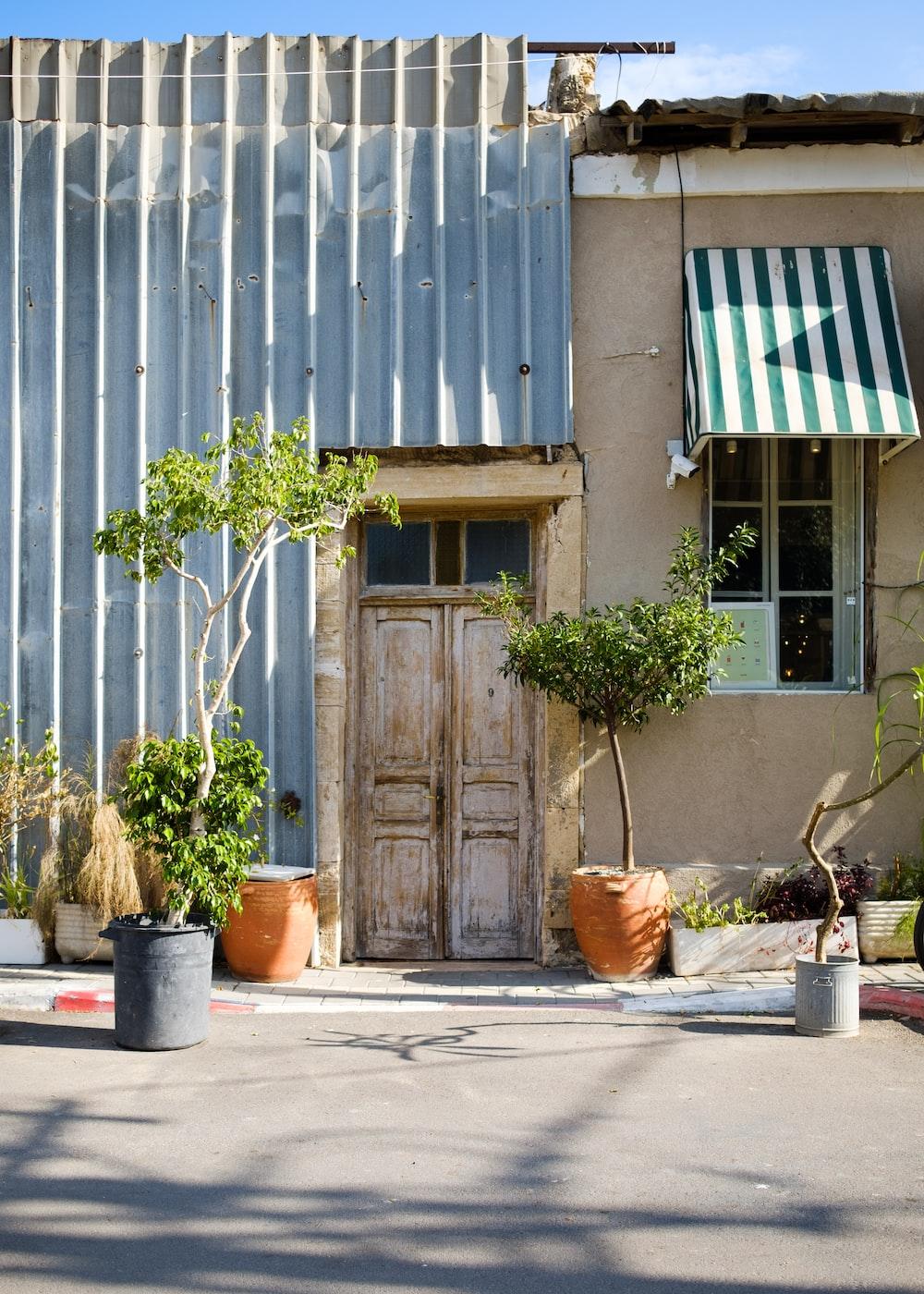 brown wooden door beside potted plants