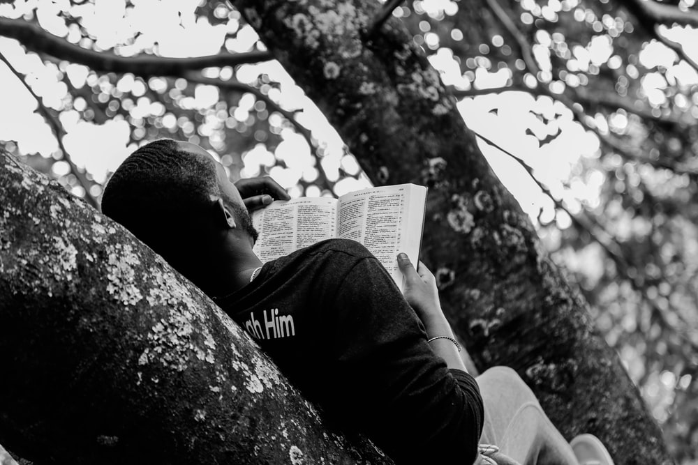 man lying on branch while reading book