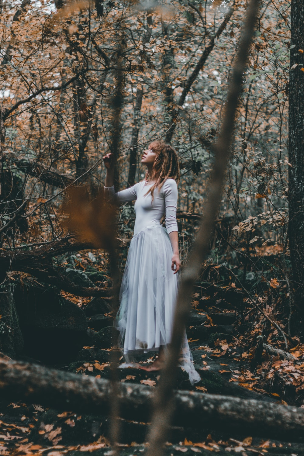 woman standing on forest trees