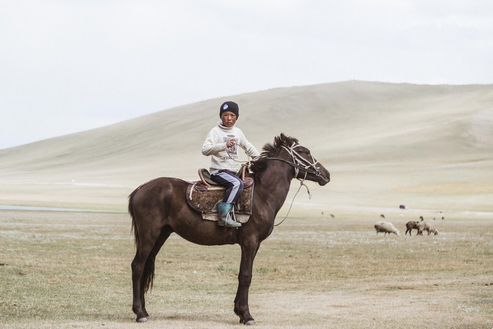 boy in white jacket riding on brown horse