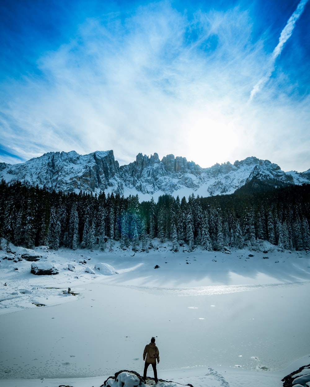 person standing on snow while staring at the forest