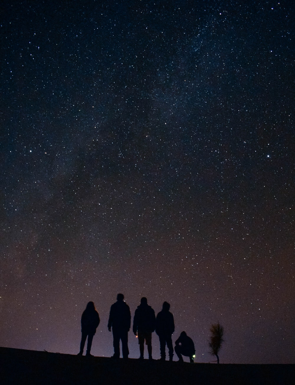 silhouette of five persons staring at the stars at night