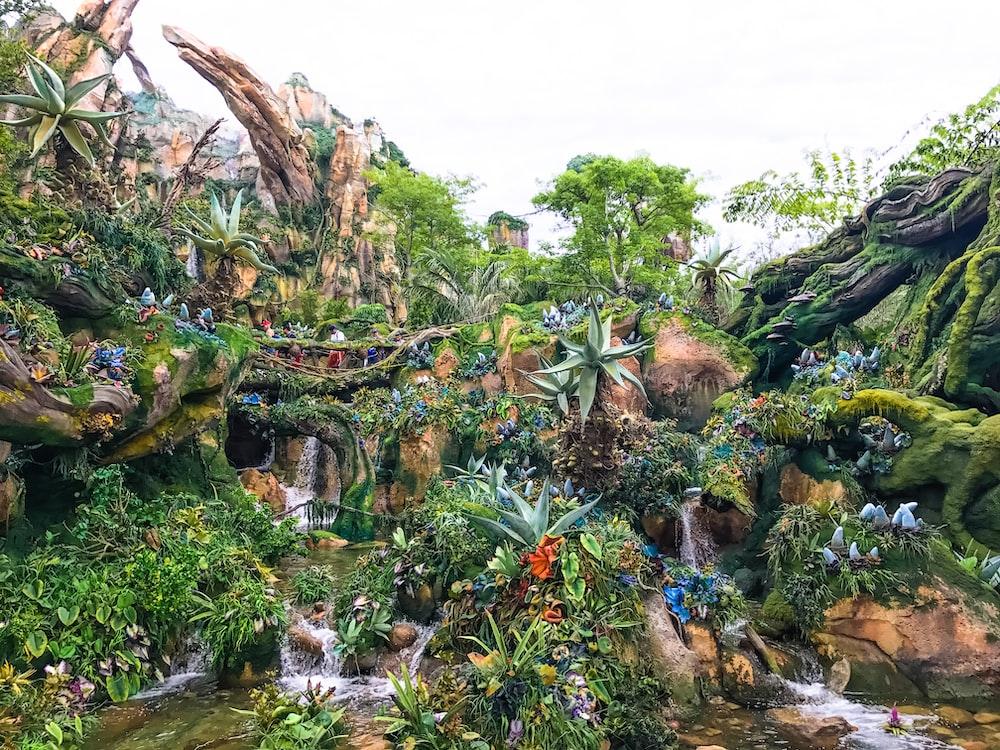 forest illustration wallpaper