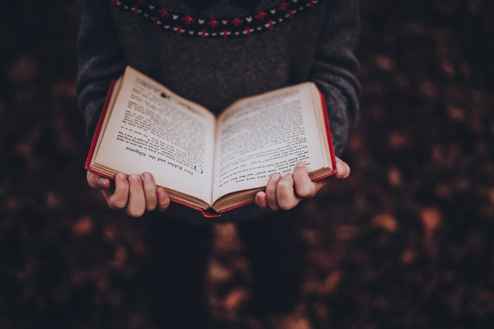 person reads book while standing on leaves