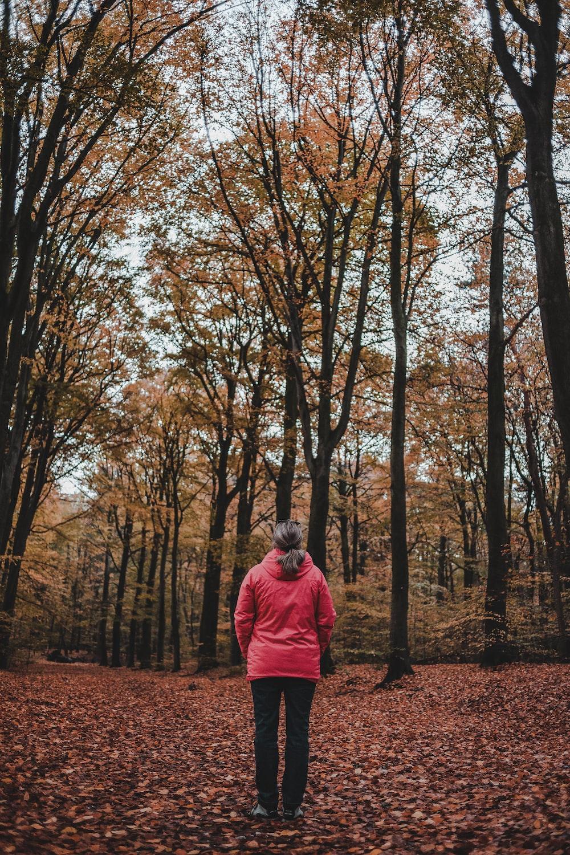 woman standing between bare trees