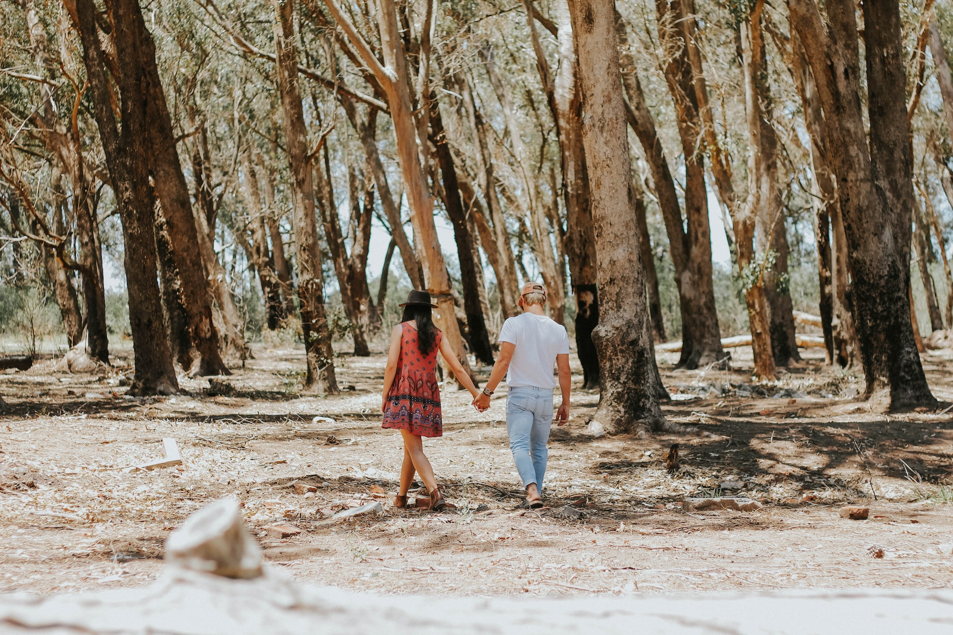 man and woman holding hands while walking under tree