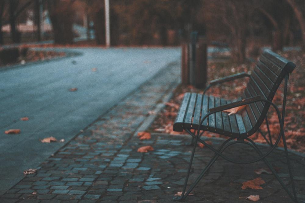 bench near trees