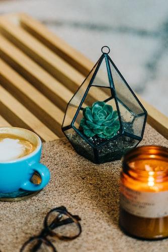 Hanging Terrarium  23 DIY Mini Plant Terrarium Ideas