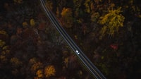 aerial photography of car cascading on highway