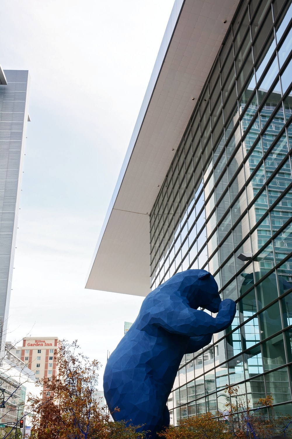 blue bear leaning on glass building
