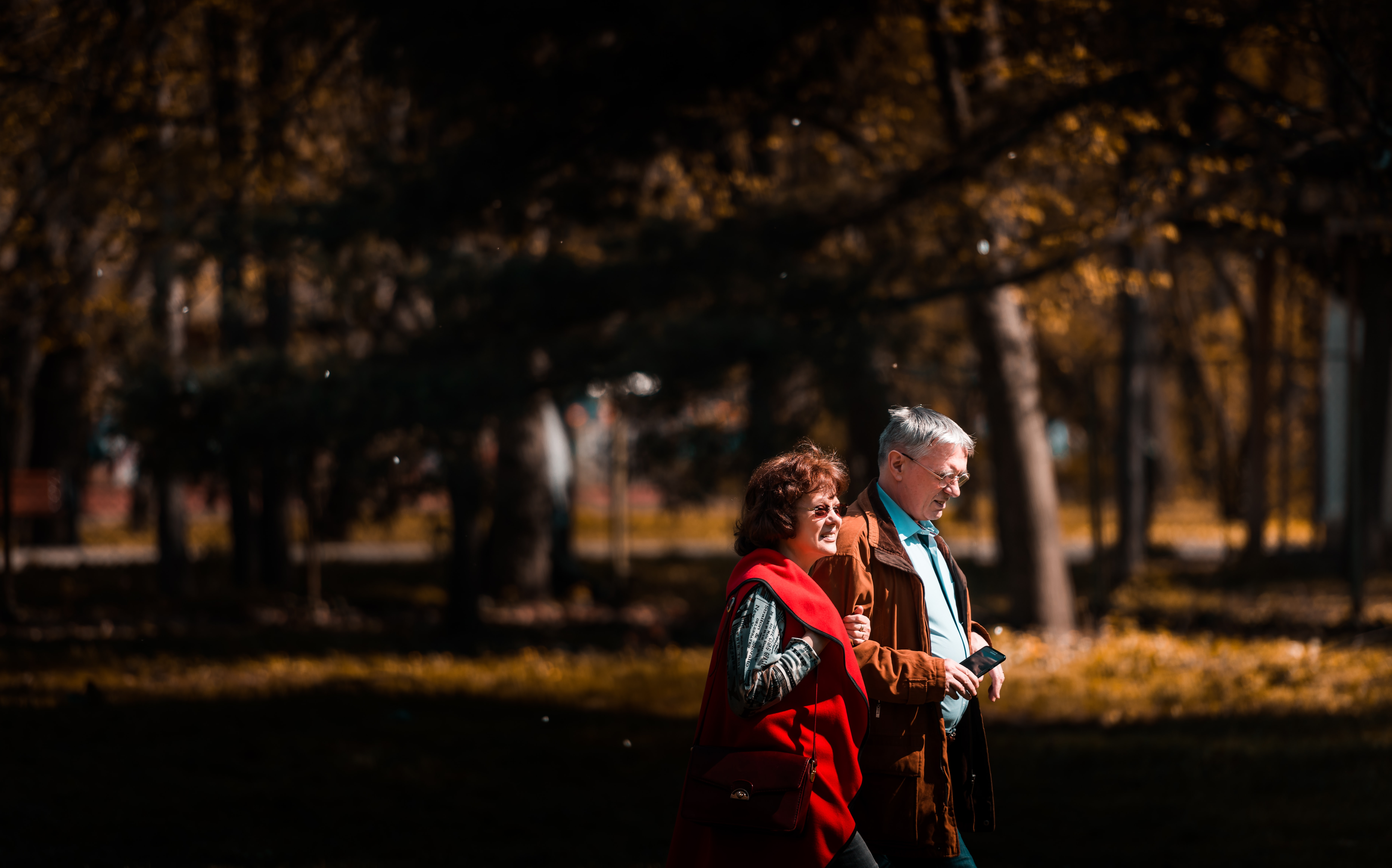 man and woman walking beside trees