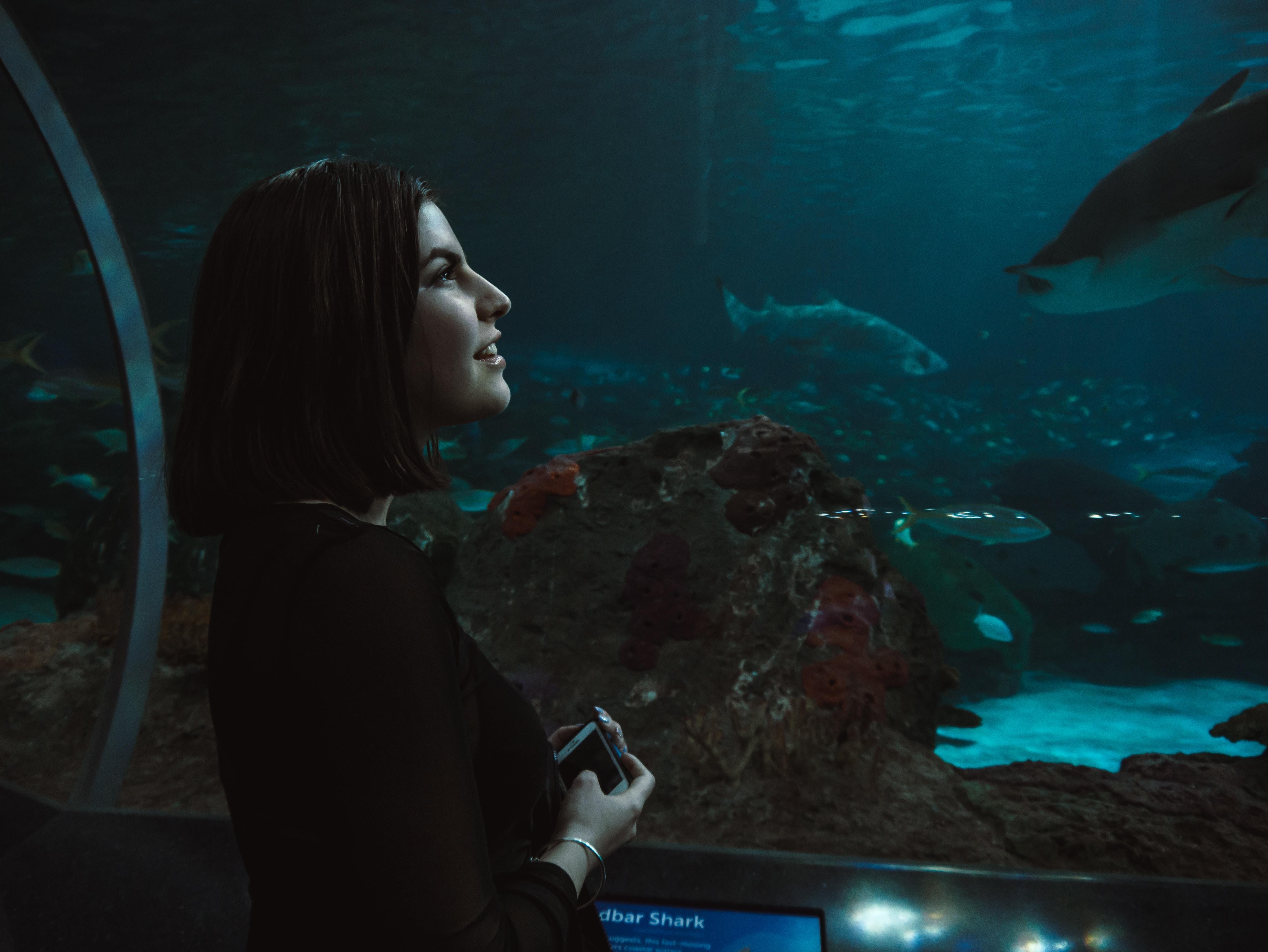 woman wearing black long-sleeved shirt facing the aquarium