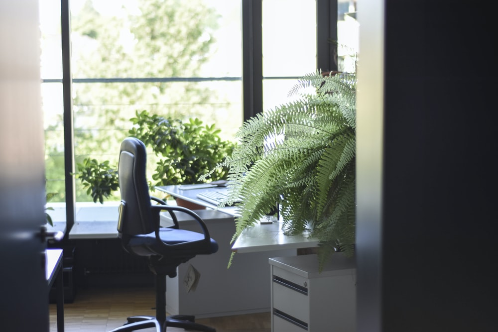 black leather rolling armchair near white wooden desk