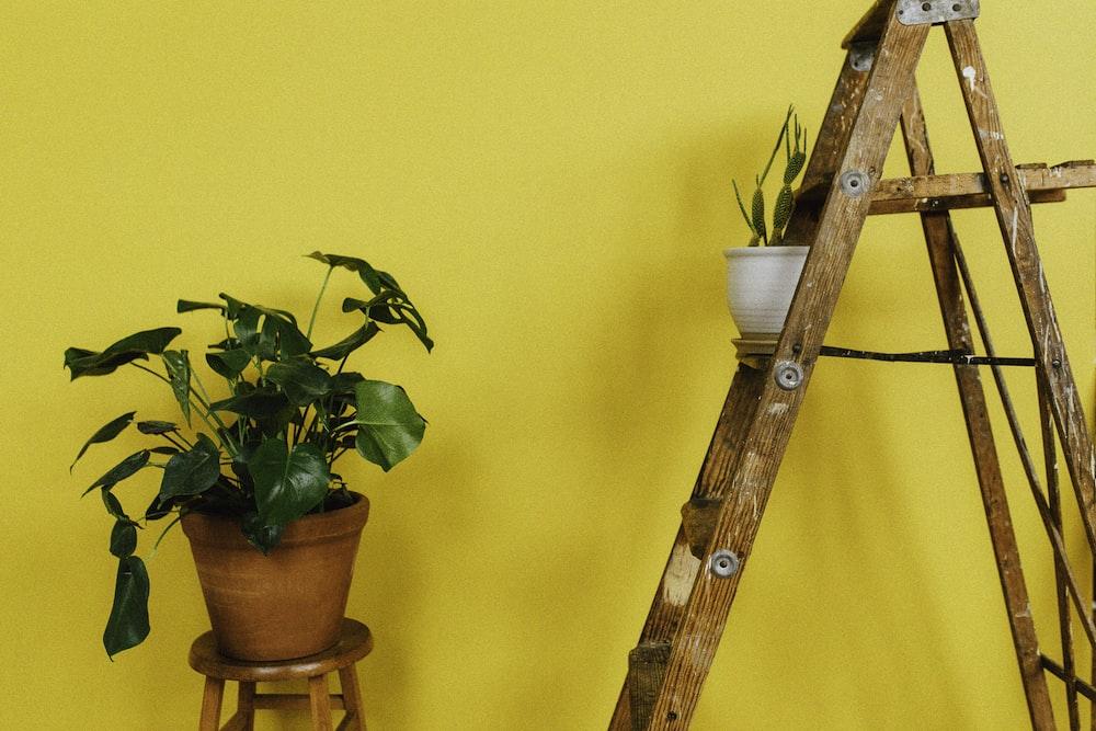 brown wooden A-frame ladder