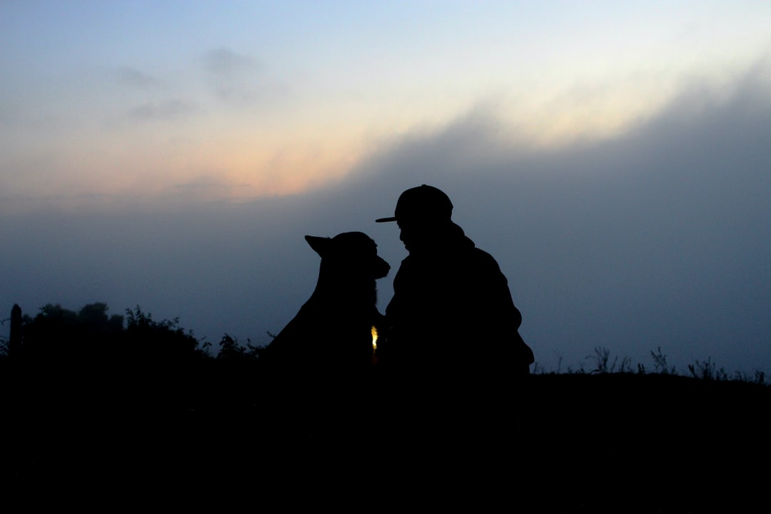 A German shepherd and a man enjoy sunrise in Santa Branca, Sao Paulo, Brazil.