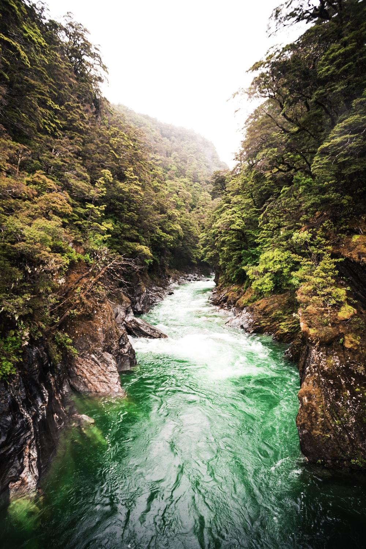 landscape photo of flowing river