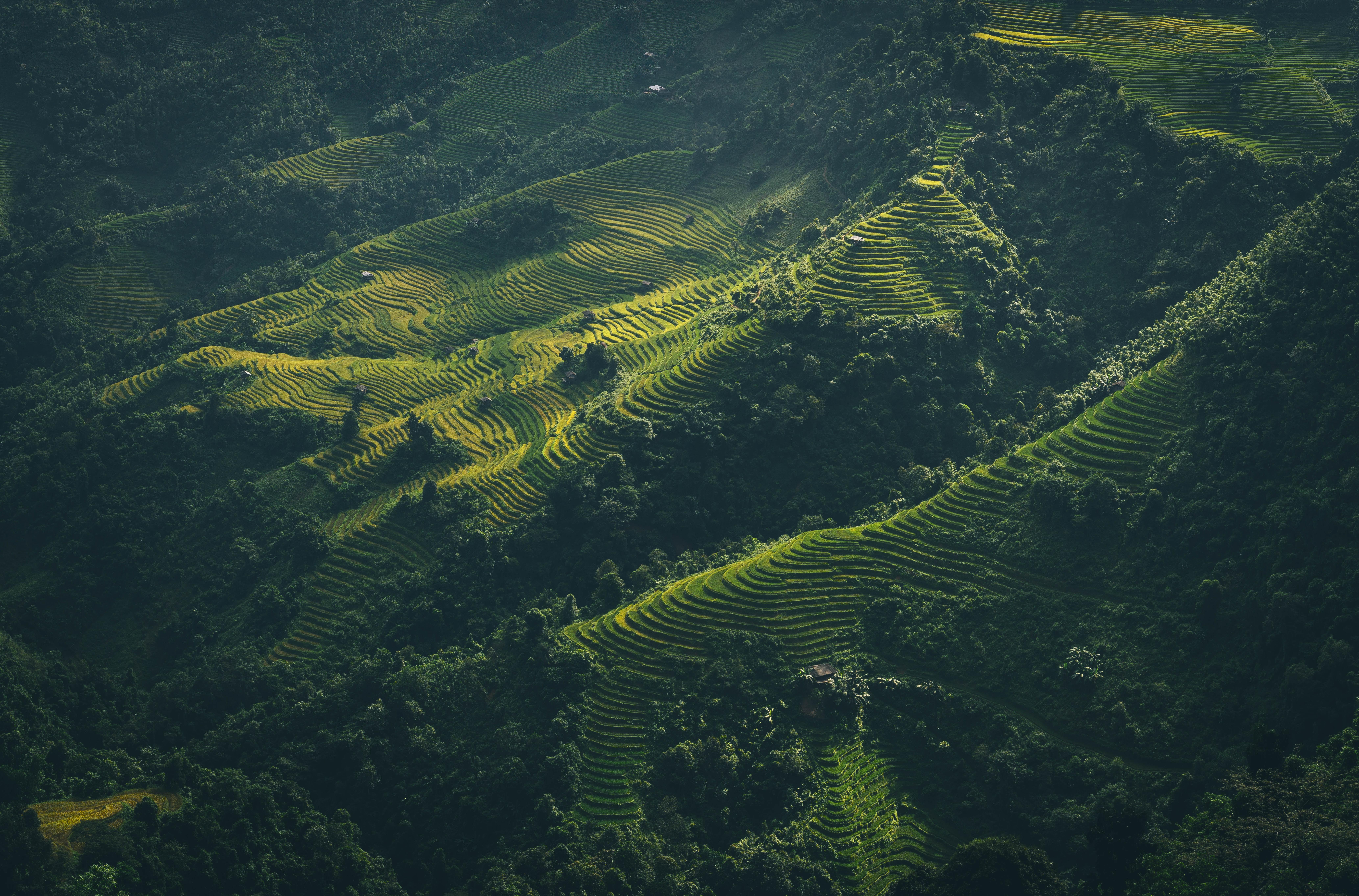 aerial view of Banaue Rice Terraces