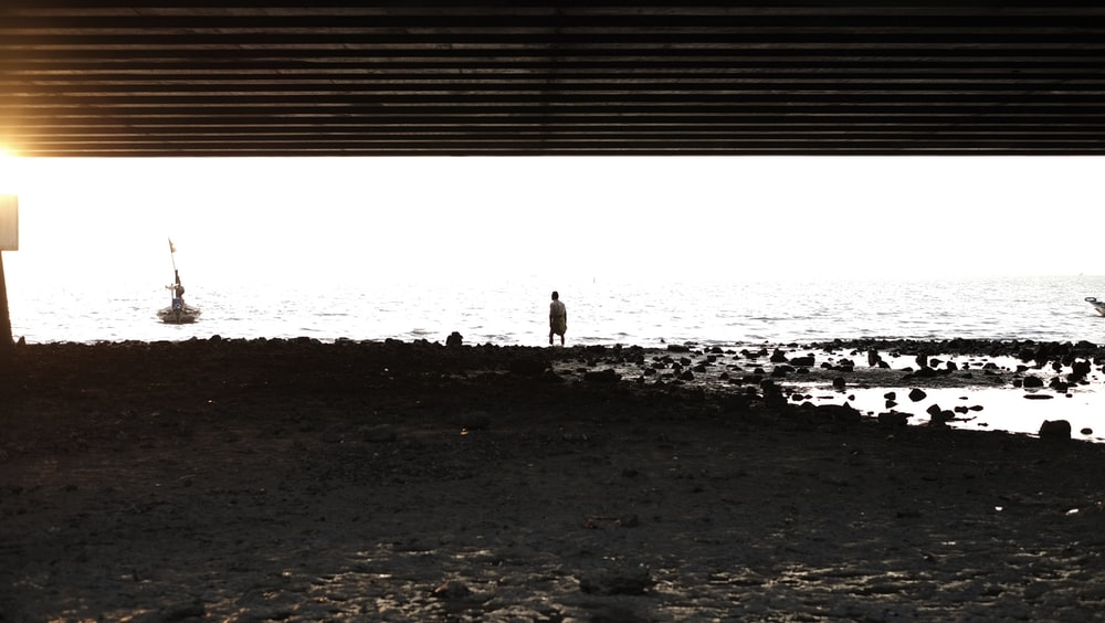 person standing on shore