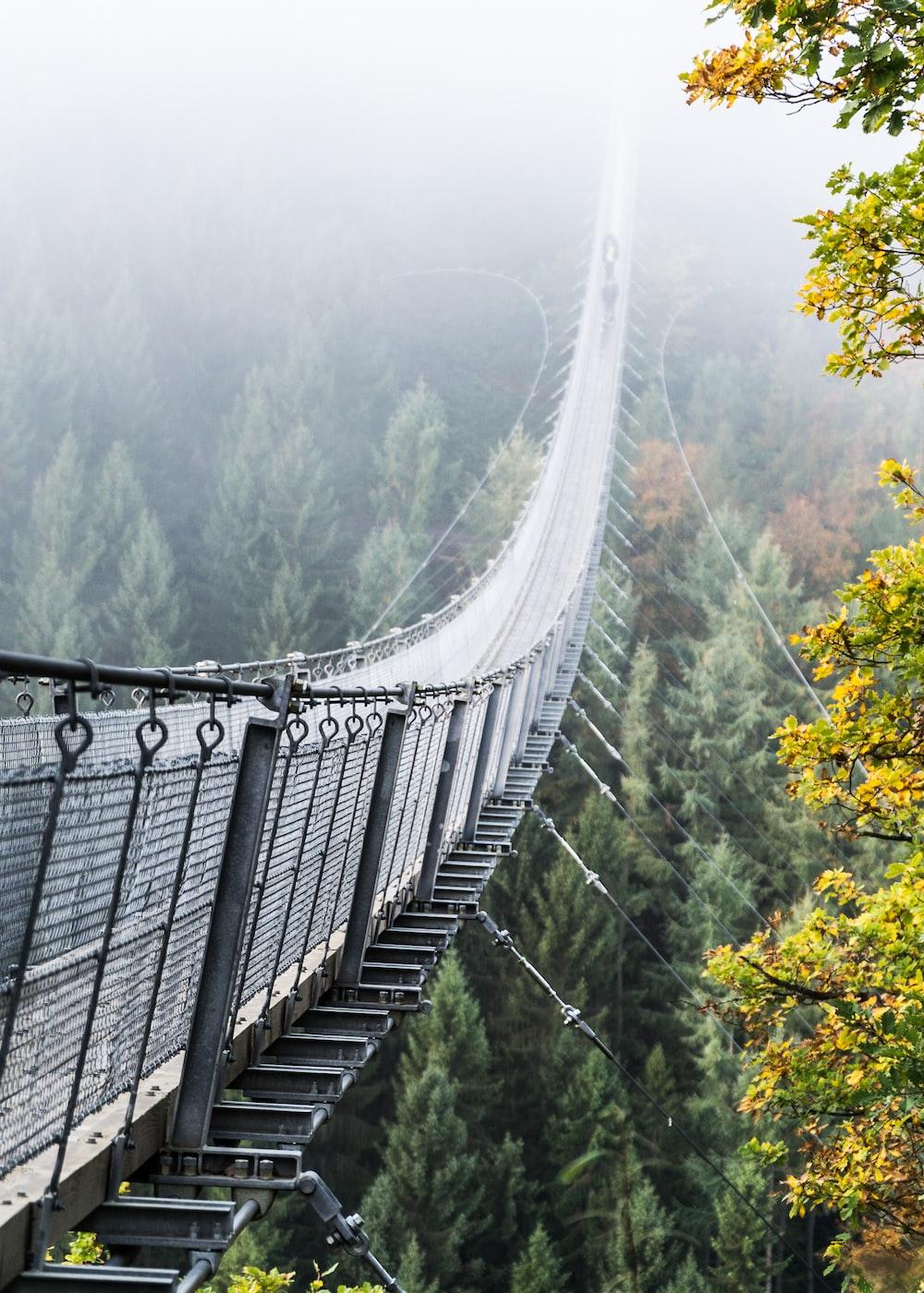 gray metal bridge