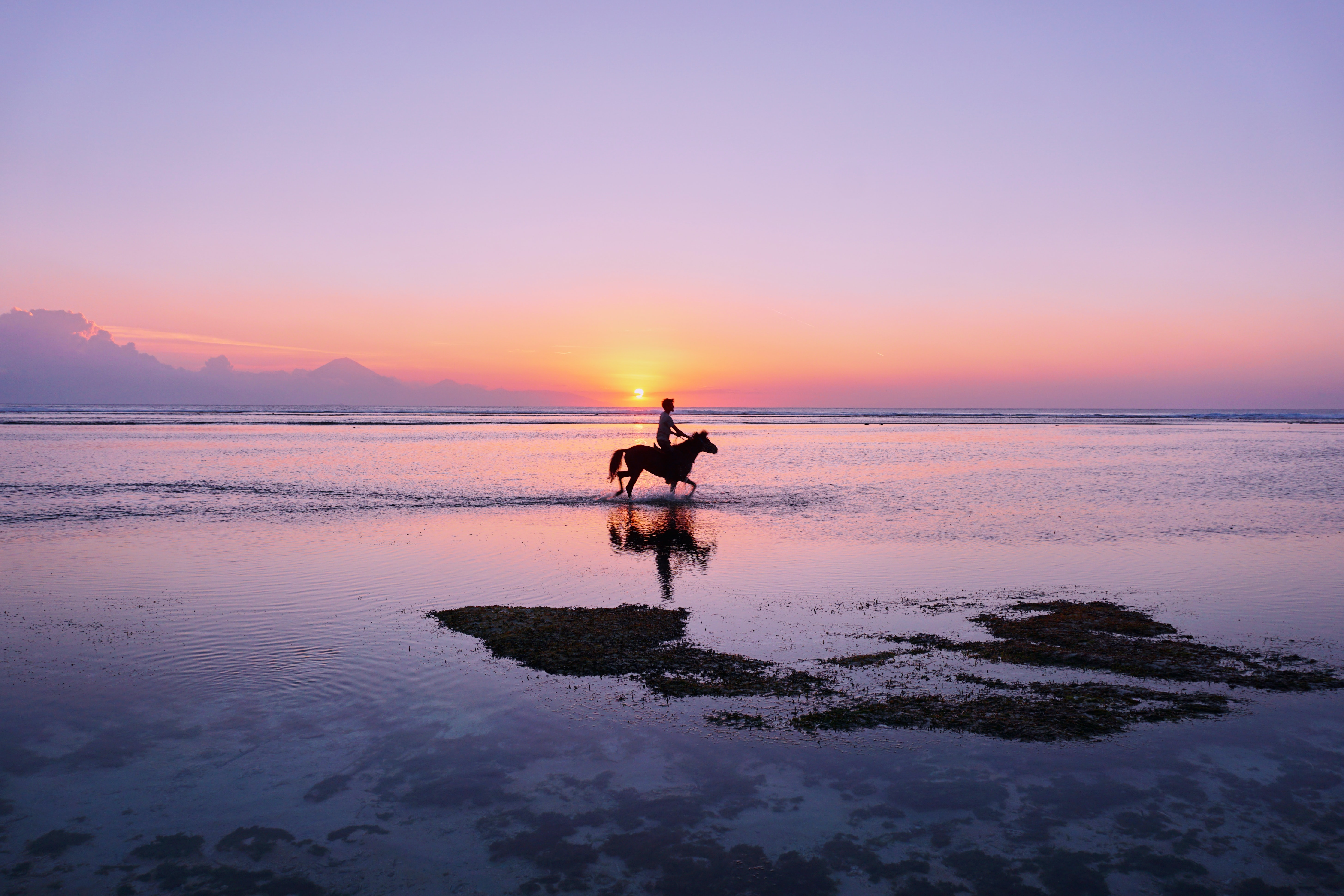 person riding horse on shore