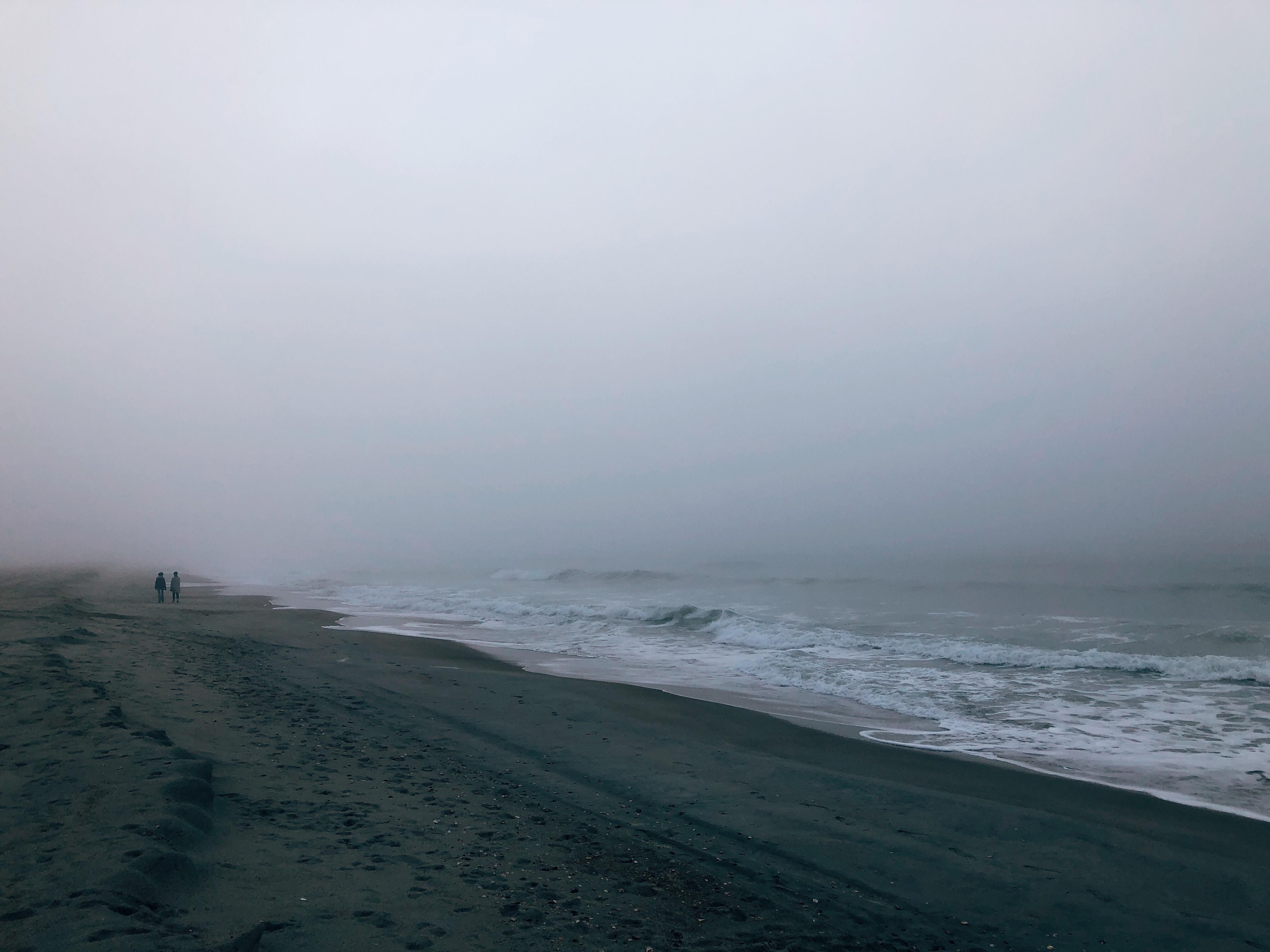 seashore under gray sky