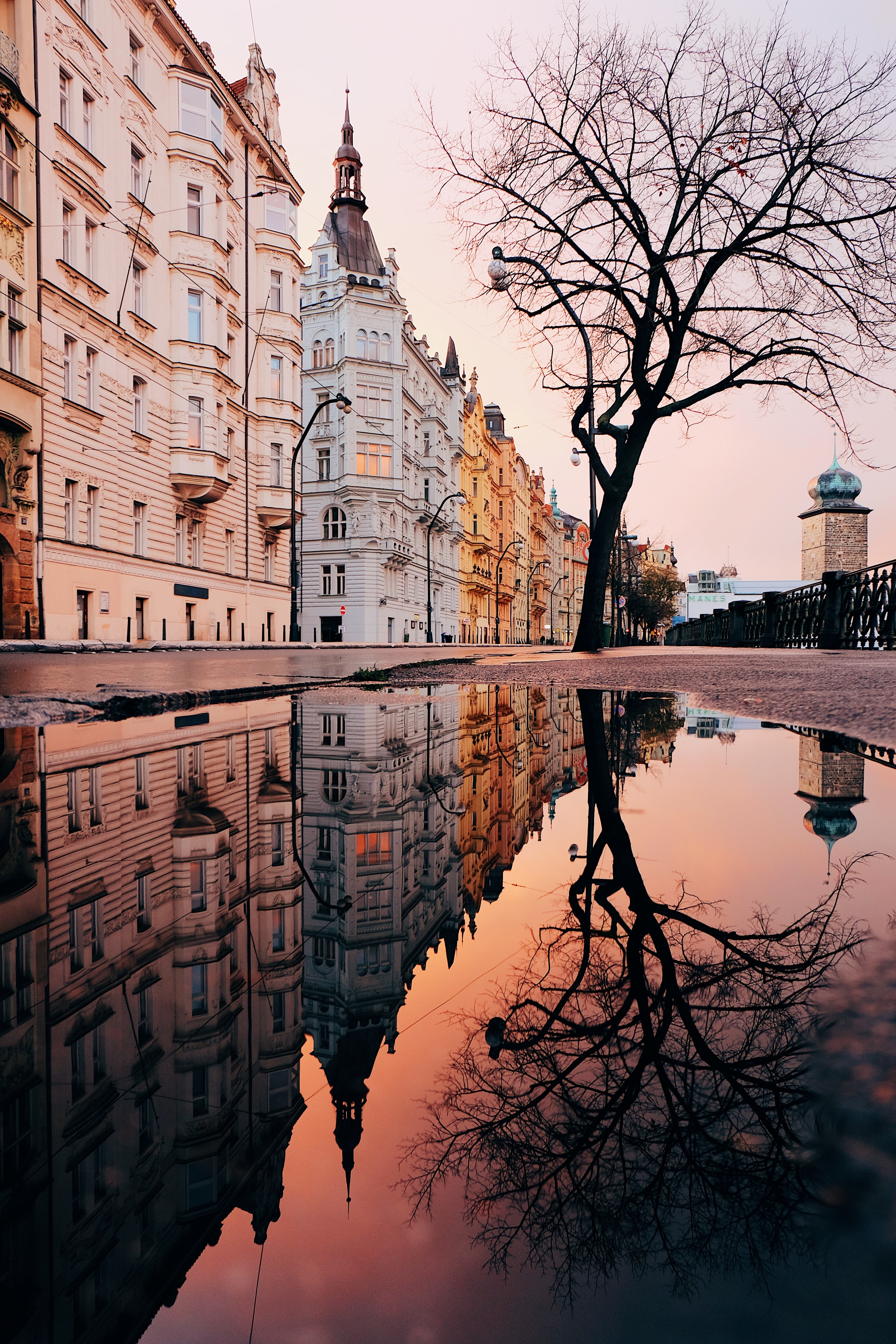puddle on road beside concrete buildings