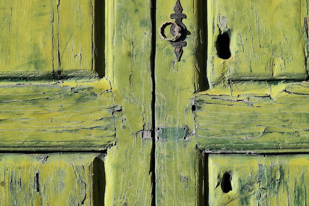 closed brown wooden 2-panel door