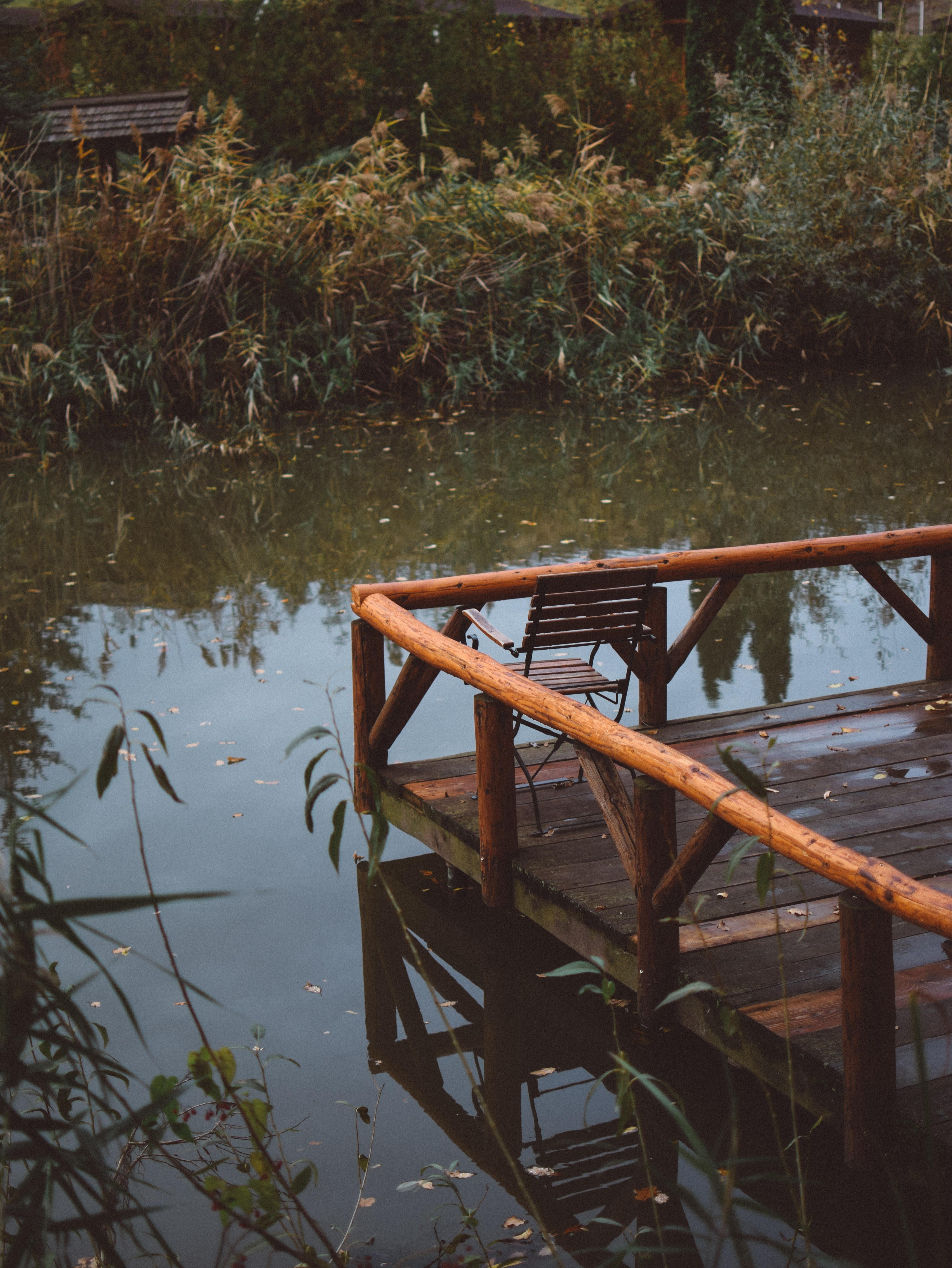 brown wooden water dock near grass