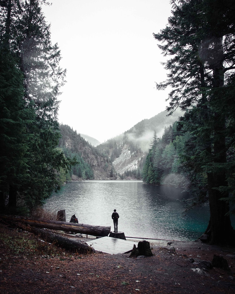 man standing on wood near mountain range