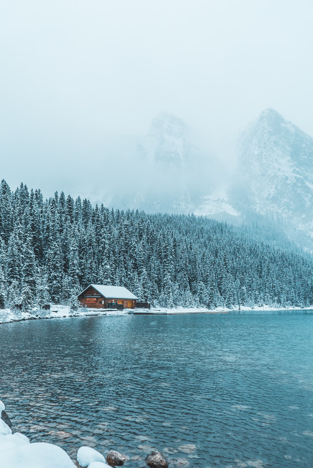 brown wooden house between trees and body of water during winter