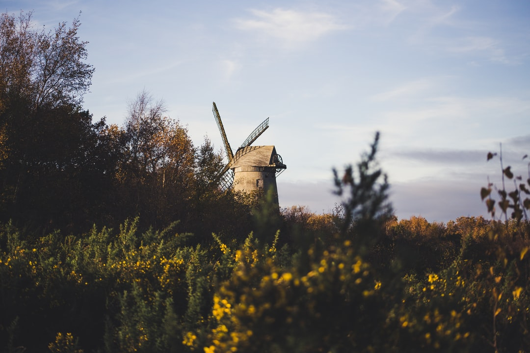 Whilst strolling around some fields in Prenton, we stumbled across this lovely little windmill and it was very cute.