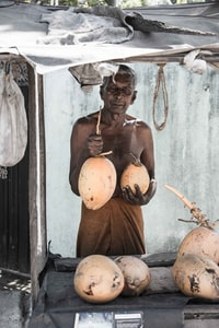 person holding coconut