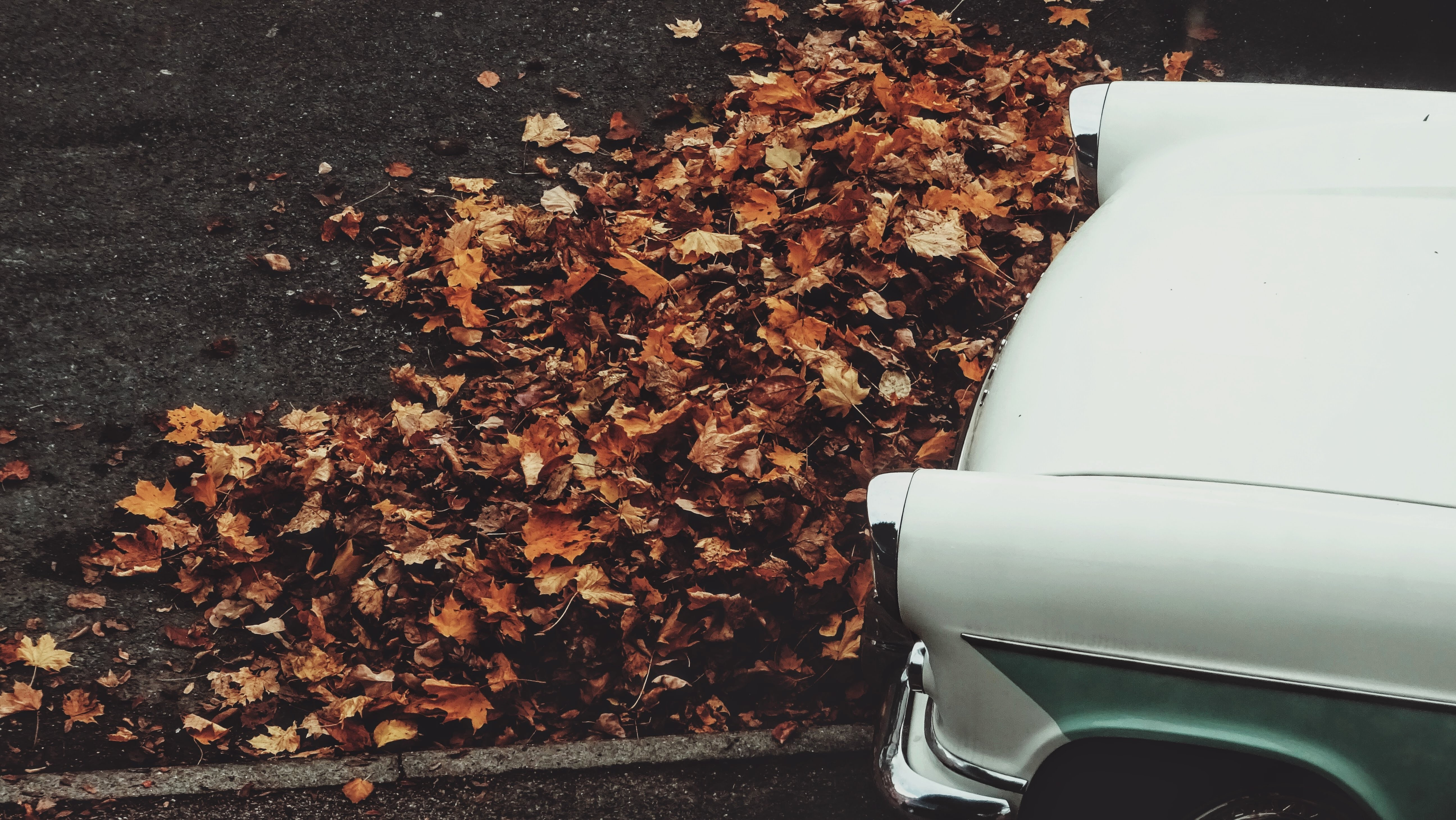 white car and pile of dried leaves