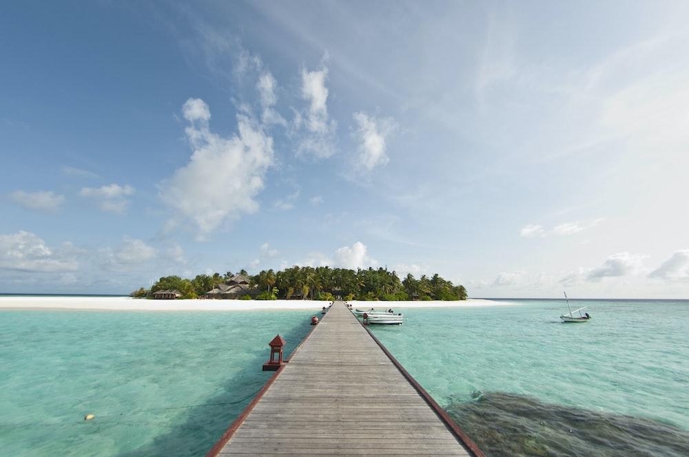 wooden dock between sea
