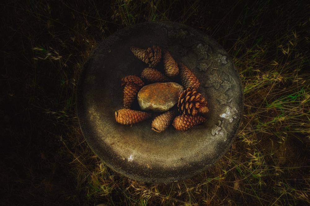 brown pinecones in brown bowl