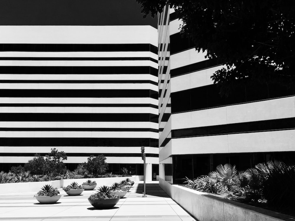 gray scale photography of building