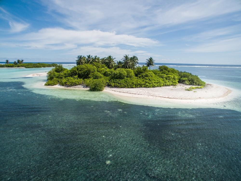 green and white island