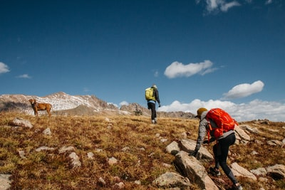 two people and brown dog hiking on mountain under blue sky during daytime hiking teams background