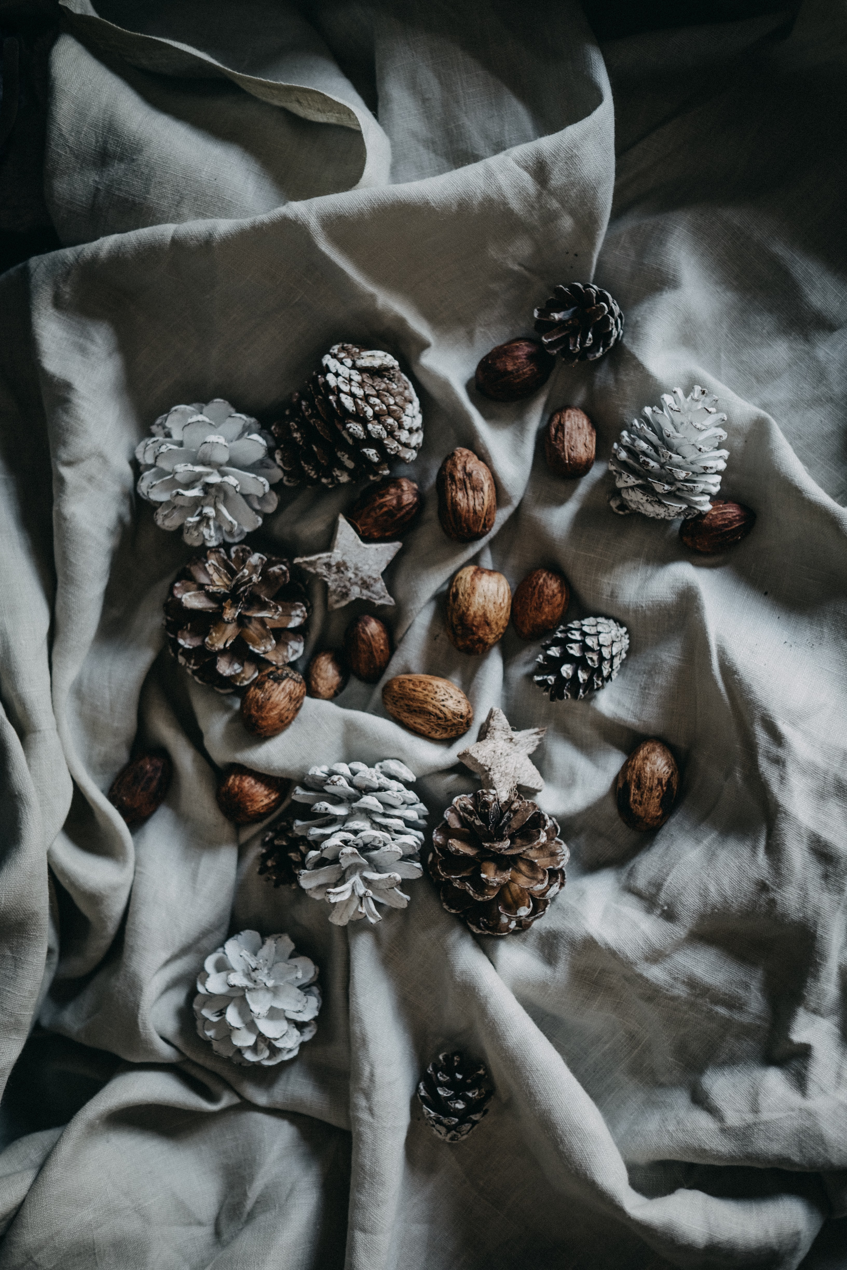 pinecone and nut on top of blanket