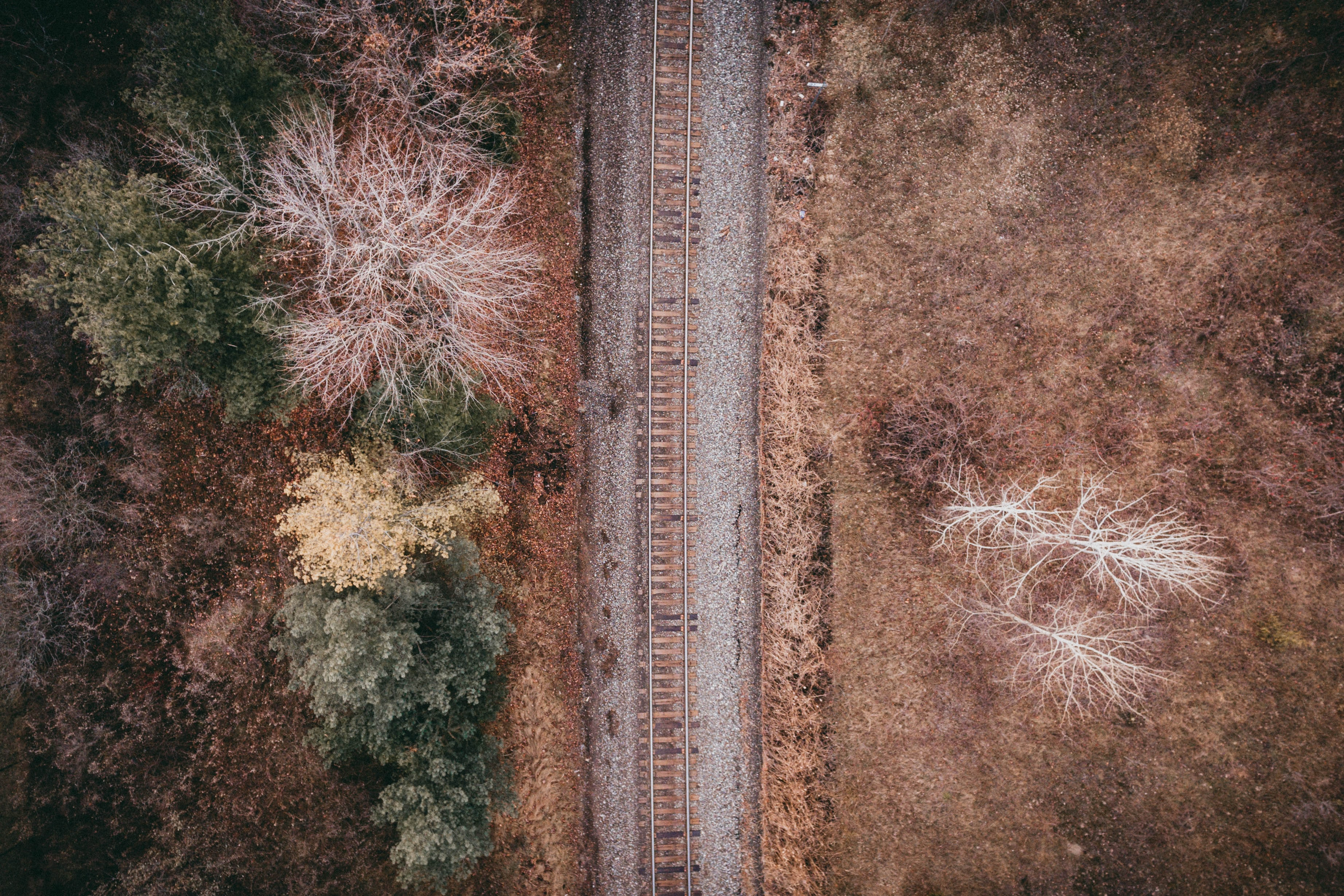 train railway beside land with trees