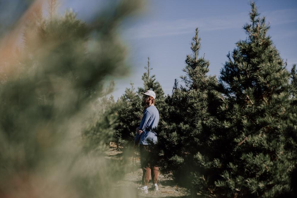 man standing near pine trees