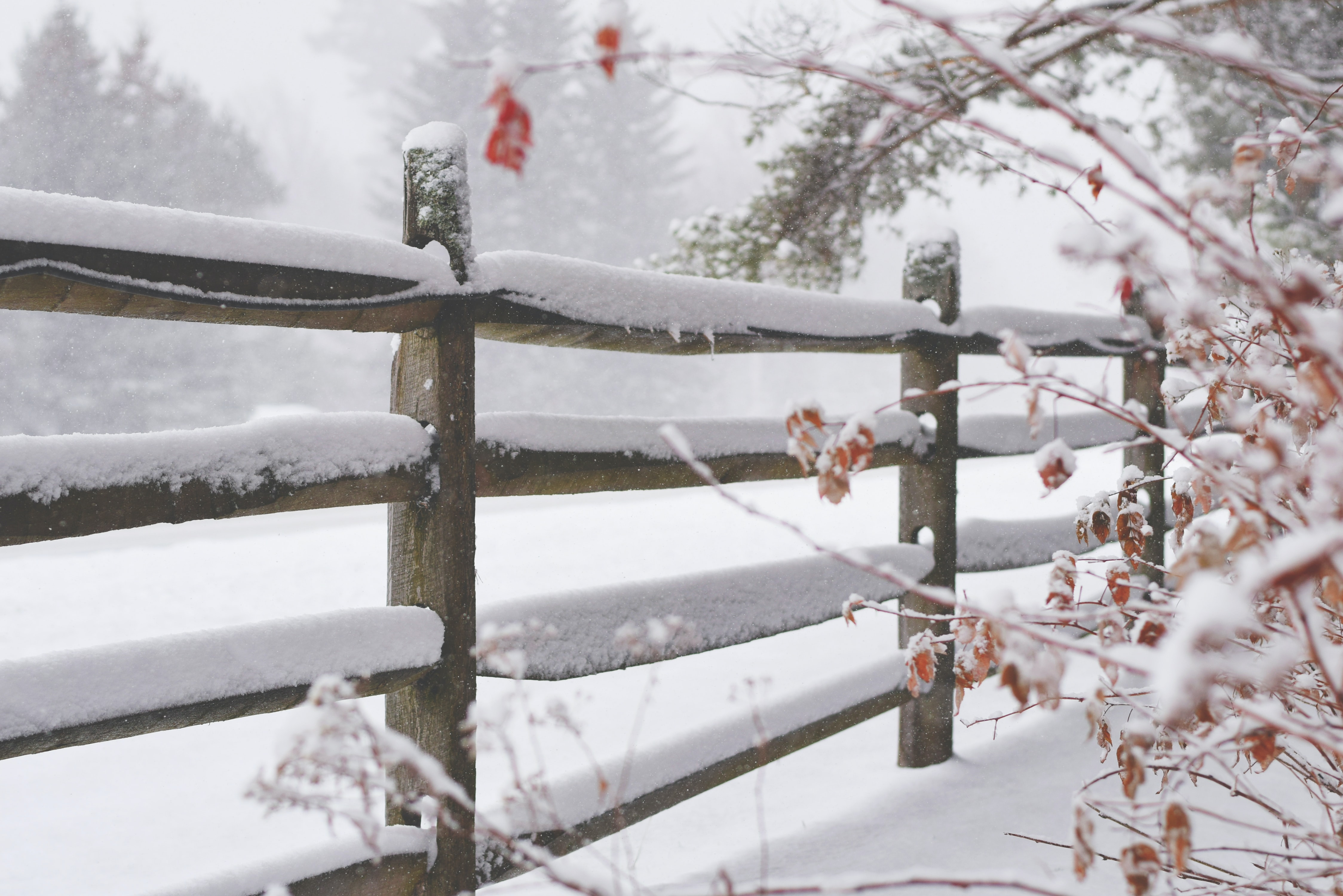 brown wooden fence filled with snow during winter