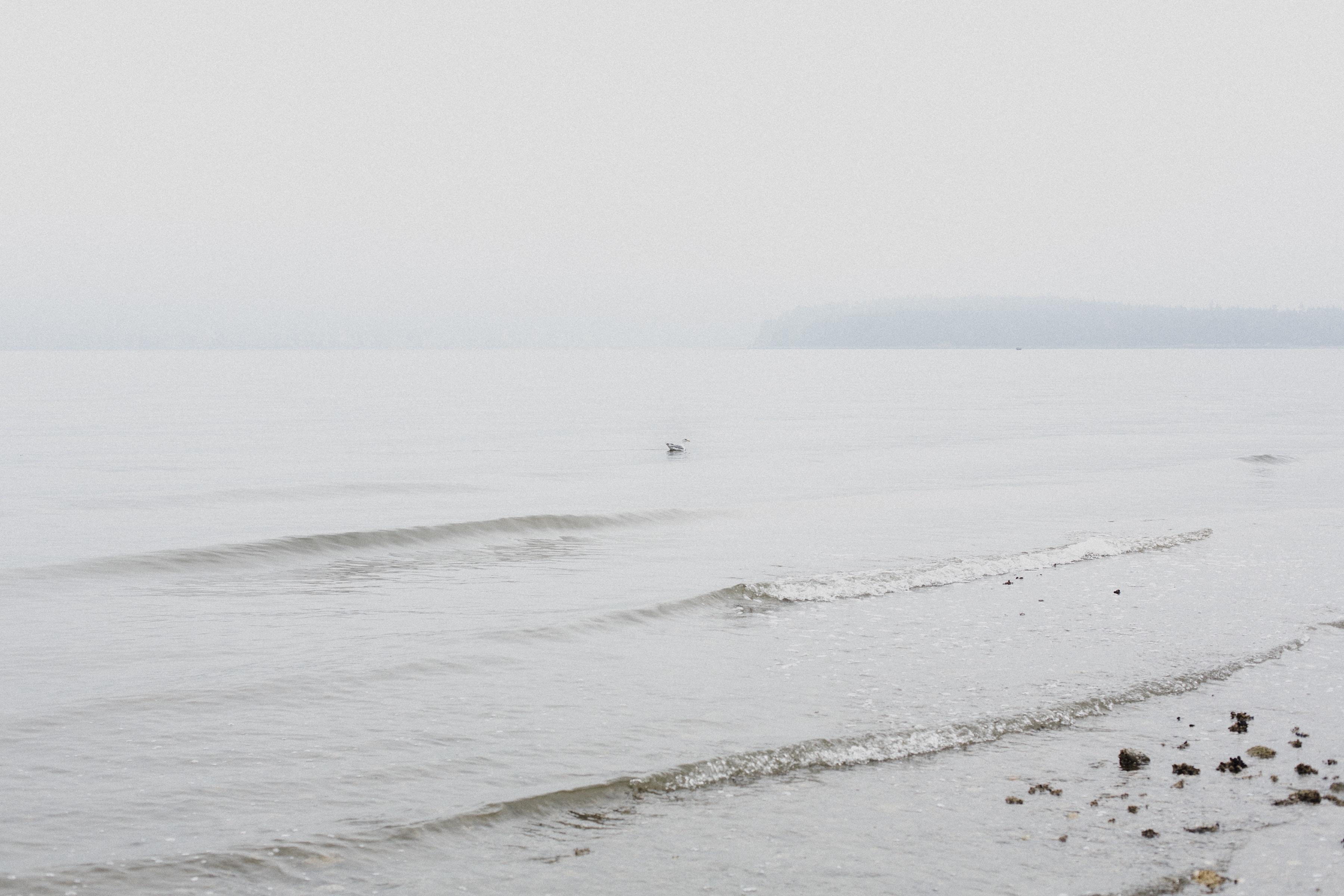 landscape photo of sea shore