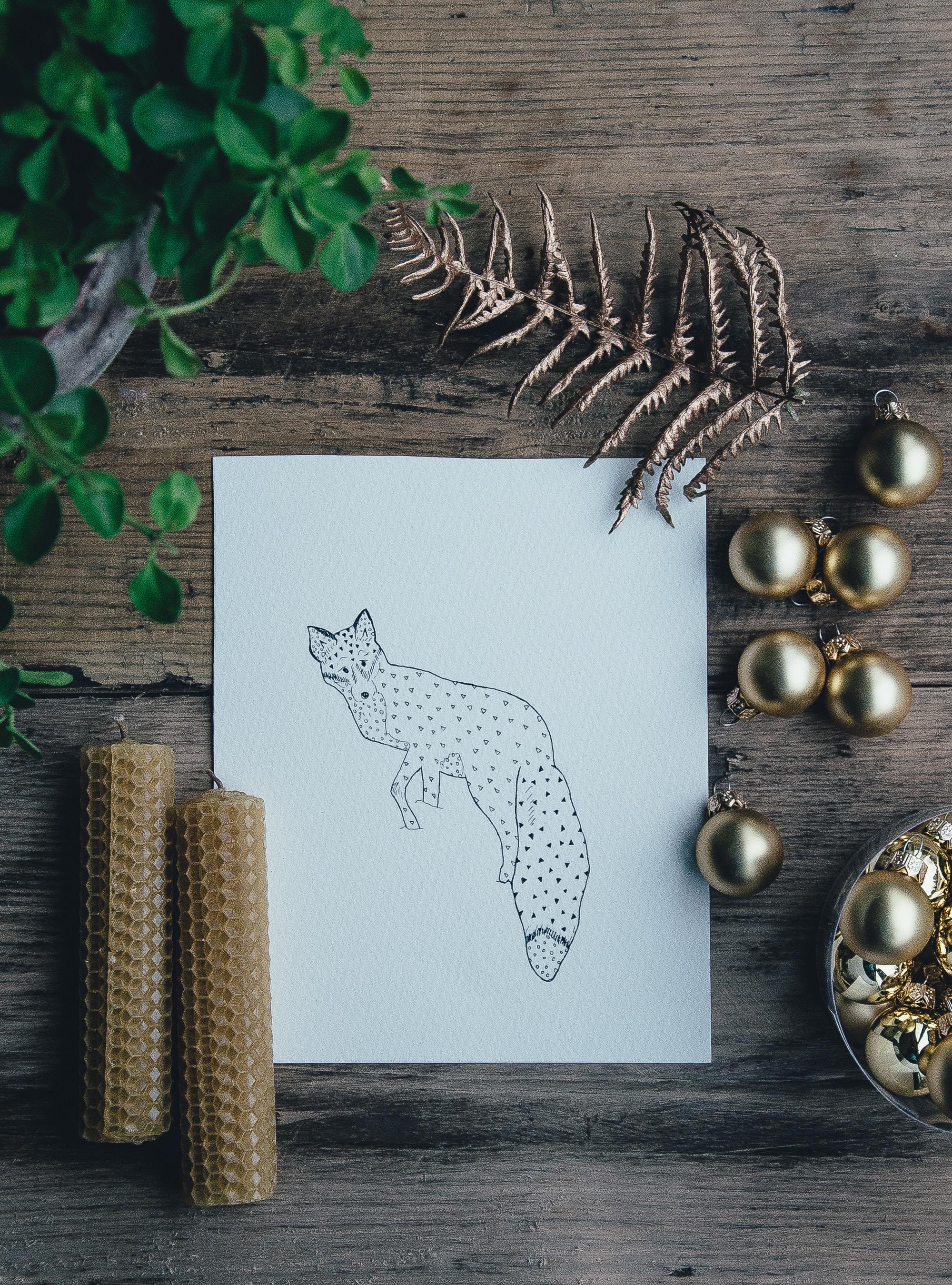 polka-dot fox illustration