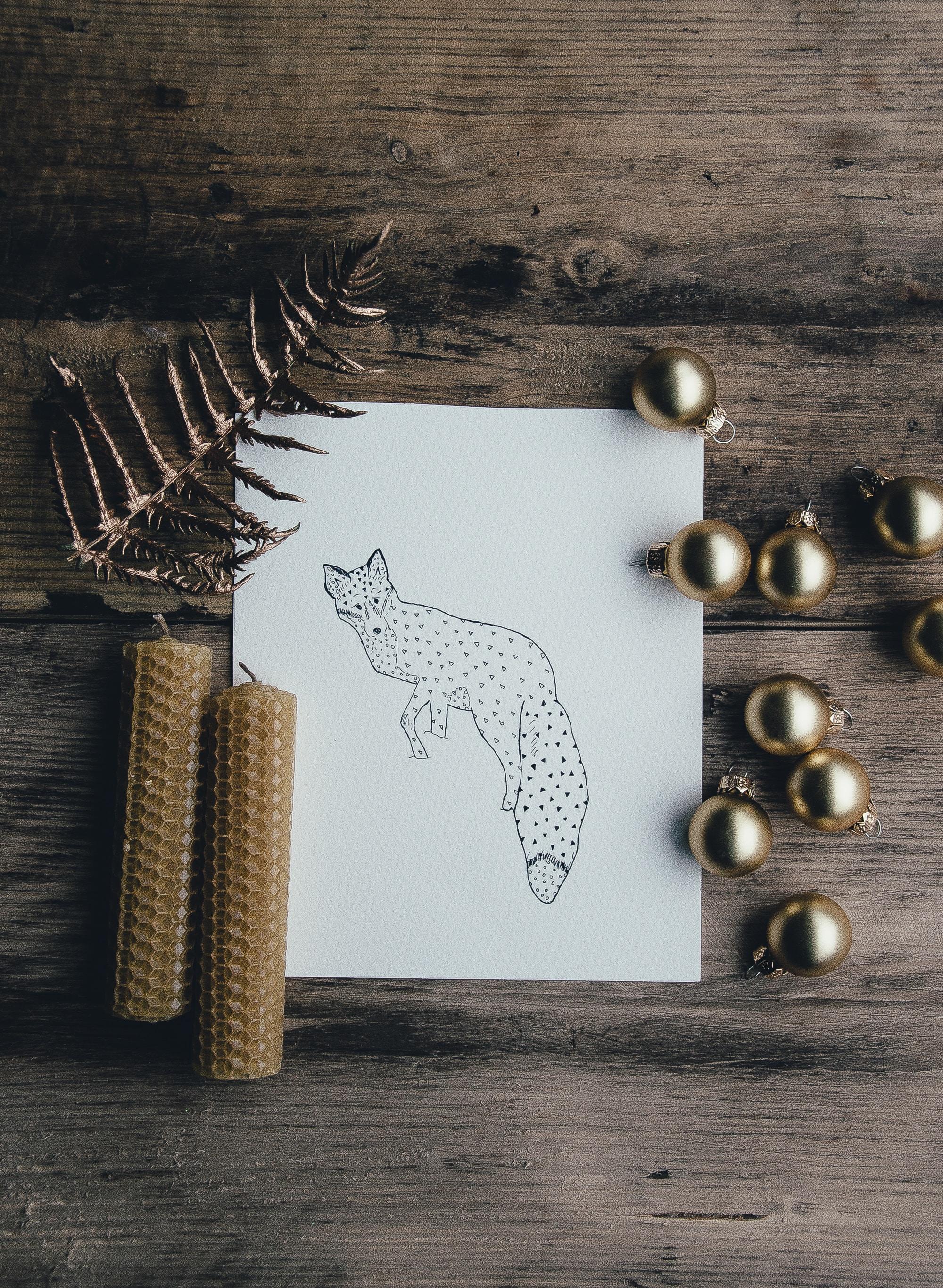 illustration of fox