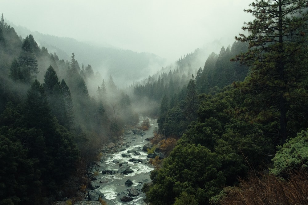 Creeks, Rivers Lakes